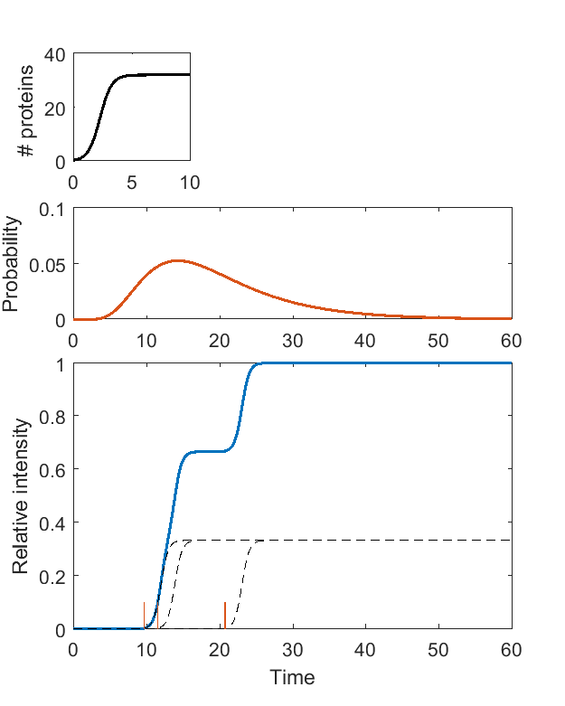 results/singlepore/pores_N=3.png