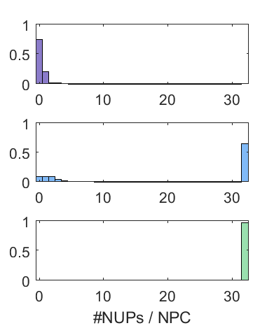 matlabcode/singlepore/example_plots/hist_coop.png