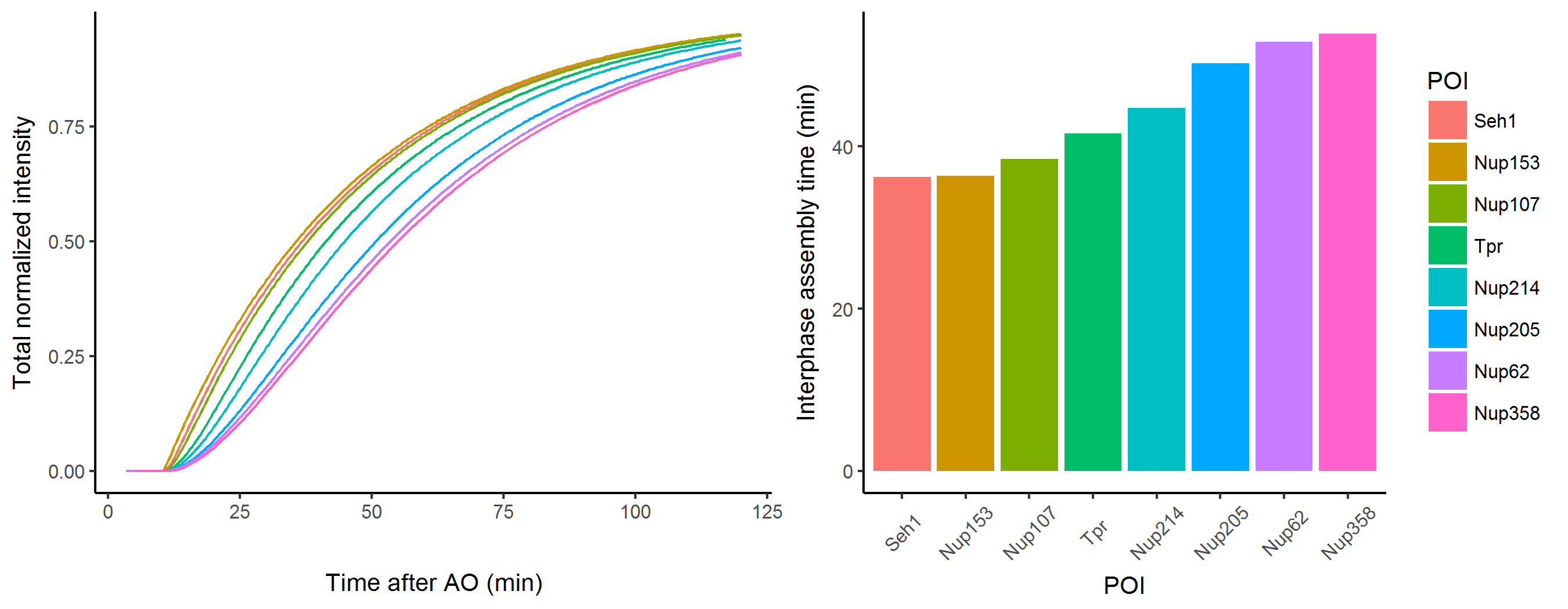 results/fitnups_2018/simulated_fixedpar_interphase.png