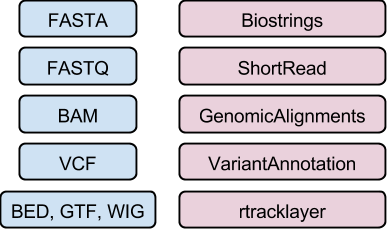 07_introduction_to_bioconductor/our_figures/FilesToPackages.png